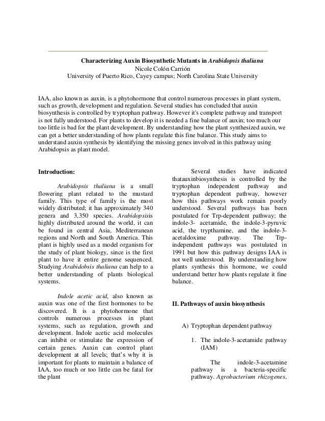 Characterizing Auxin Biosynthetic Mutants in Arabidopsis thaliana                                     Nicole Colón Carrión...