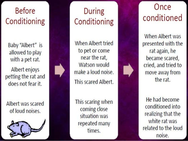 little albert classical conditioning essay Classic conditioning research john b watson and rosalyn rayner with little albert classical conditioning provides a way to treat fears and phobias as.