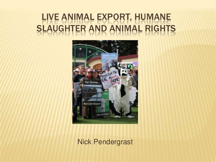 LIVE ANIMAL EXPORT, HUMANESLAUGHTER AND ANIMAL RIGHTS       Nick Pendergrast