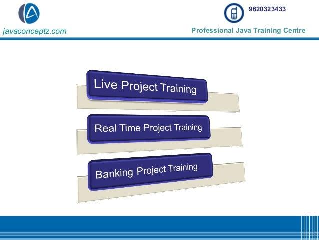 Live project training on java