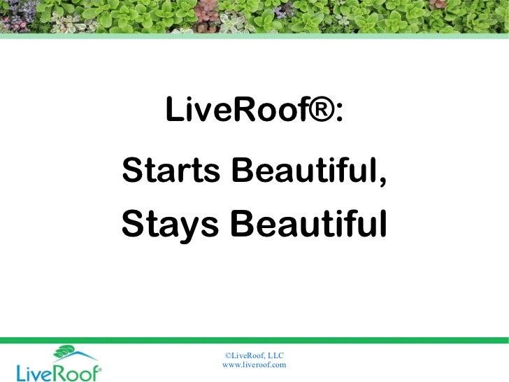 LiveRoof® Green Roofs Start Beautiful, Stay Beautiful