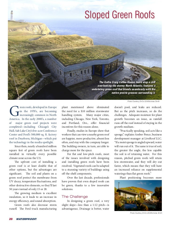 Sloped Green Roofs                                                                             The Gallie Craig Coffee Hou...