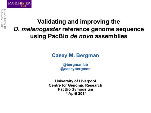 Validating and improving the D. melanogaster reference genome sequence using PacBio de novo assemblies Casey M. Bergman @b...