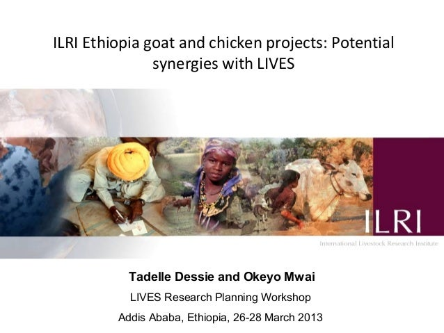 ILRI Ethiopia goat and chicken projects: Potential               synergies with LIVES           Tadelle Dessie and Okeyo M...