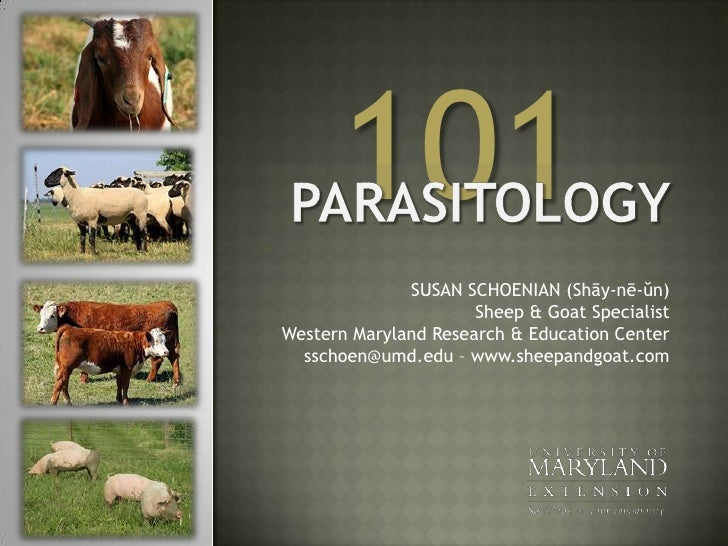 101<br />Parasitology <br />SUSAN SCHOENIAN (Shāy-nē-ŭn)Sheep & Goat SpecialistWestern Maryland Research & Education Cente...
