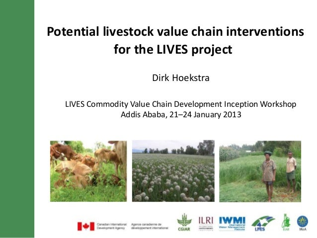 Potential livestock value chain interventions for the LIVES project
