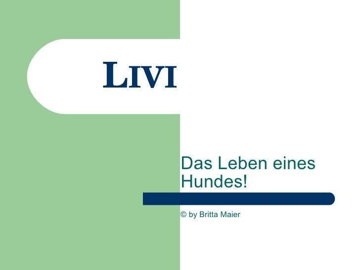 L IVI Das Leben eines Hundes! © by Britta Maier