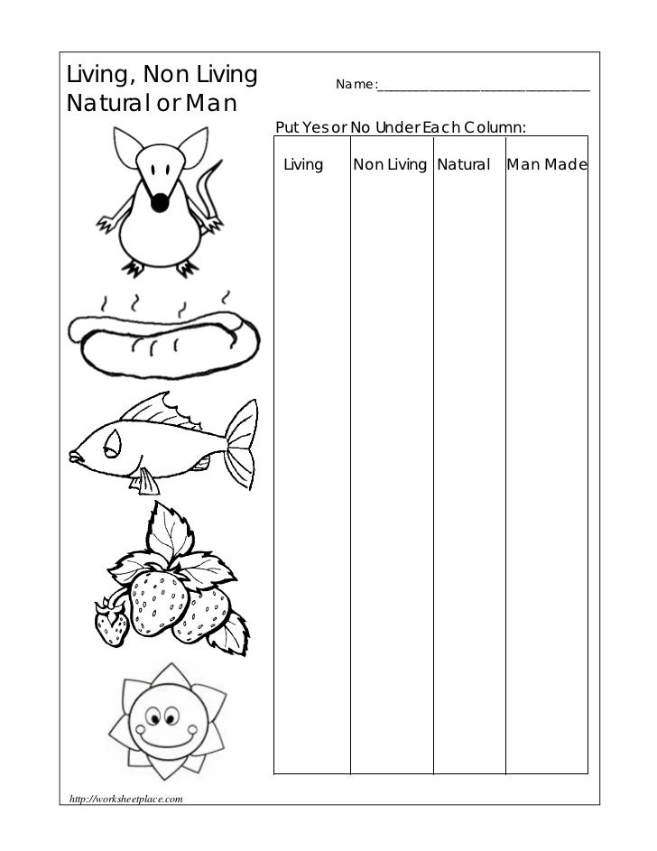 Living or non living worksheet 1 for Living and nonliving things coloring pages