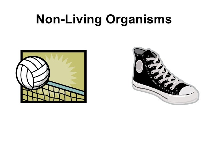 living organismns Critical ideas & vels standards level 3 - living things science continuum p-10.