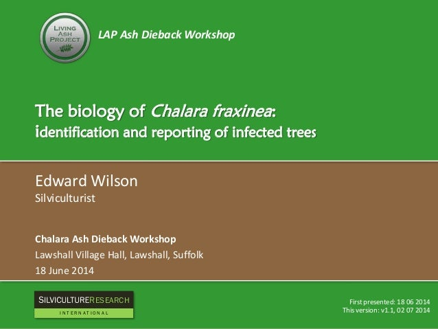 LAP Ash Dieback Workshop The biology of Chalara fraxinea: identification and reporting of infected trees Edward Wilson Sil...