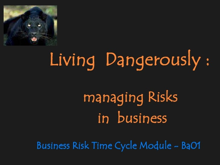 Living  Dangerously :<br />managing Risks <br />         in  business<br />Business Risk Time Cycle Module - Ba01<br />