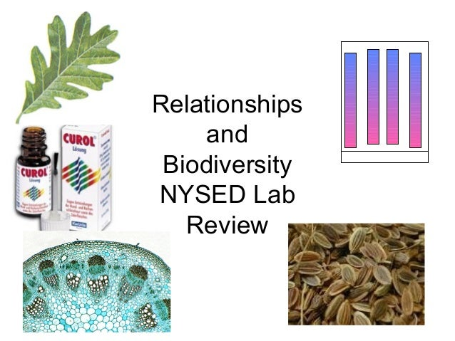 Relationships and Biodiversity  State Lab Review(1)
