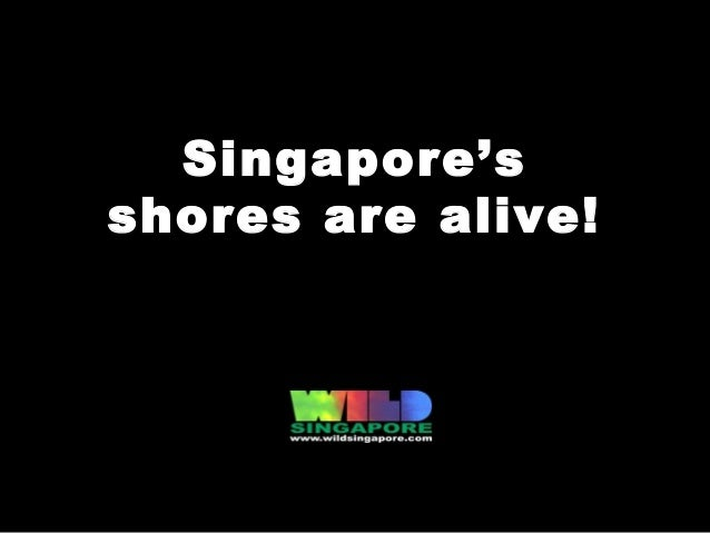 Living Shores of Singapore (Apr 2013)
