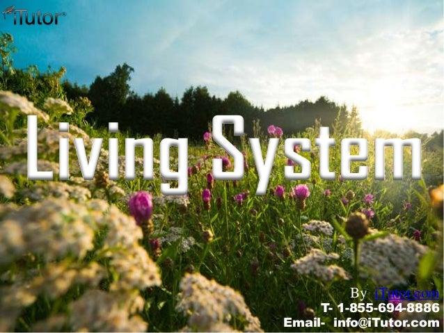 Living System T- 1-855-694-8886 Email- info@iTutor.com By iTutor.com
