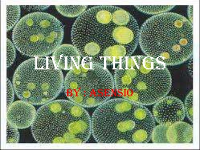 LIVING THINGS BY : Asensio