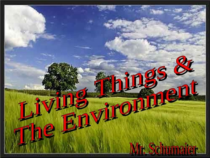 Living Things & The Environment Mr. Schumaier