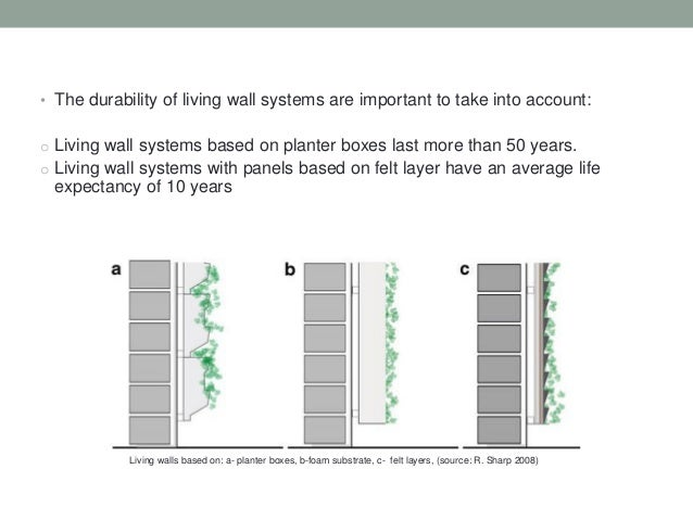An introduction to green walls living walls for Green wall system