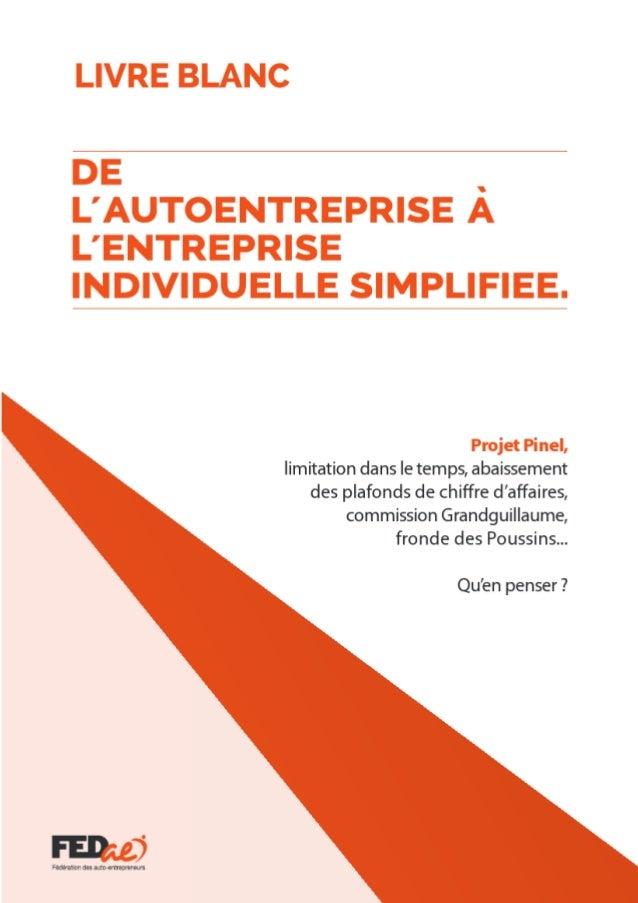 Livre blanc auto-entrepreneur 2013