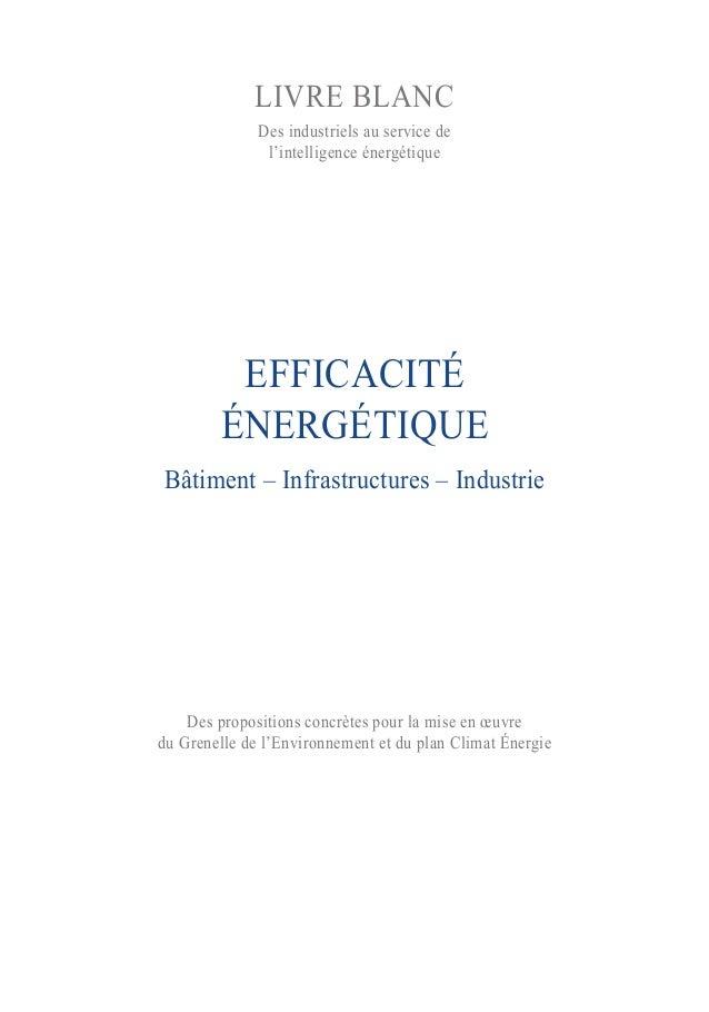 EFFICACITÉÉNERGÉTIQUEBâtiment – Infrastructures – IndustrieDes propositions concrètes pour la mise en œuvredu Grenelle de ...