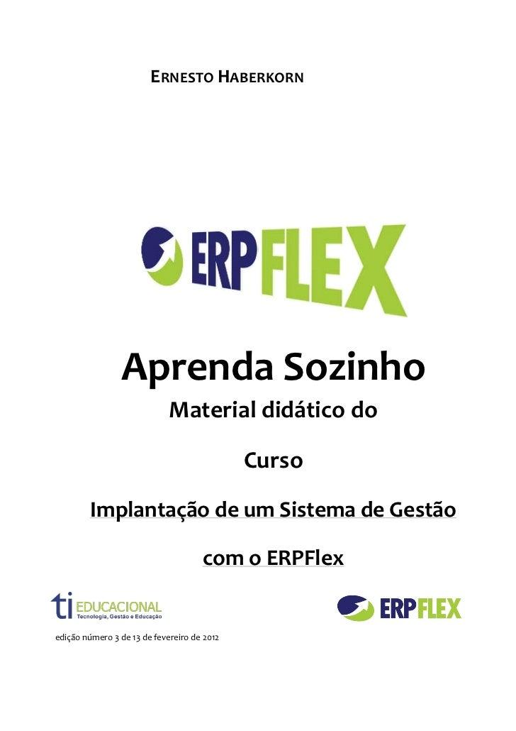 Implantação de um Sistema de Gestão ERPFLEX WEB