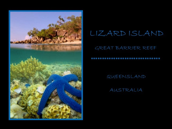 LIZARD ISLAND GREAT BARRIER REEF AUSTRALIA ******************************* QUEENSLAND