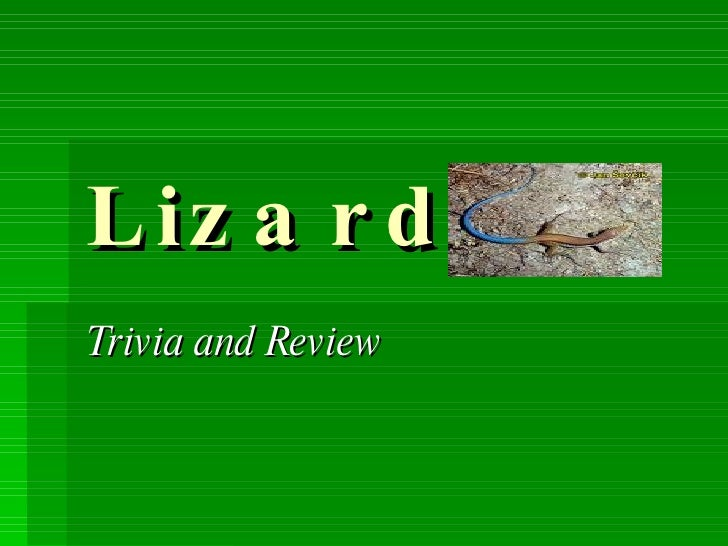 Lizards Trivia and Review