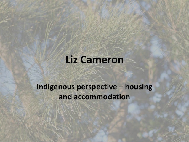 Liz Cameron Indigenous perspective – housing and accommodation