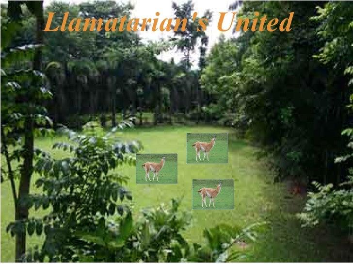 Llamatarian's United