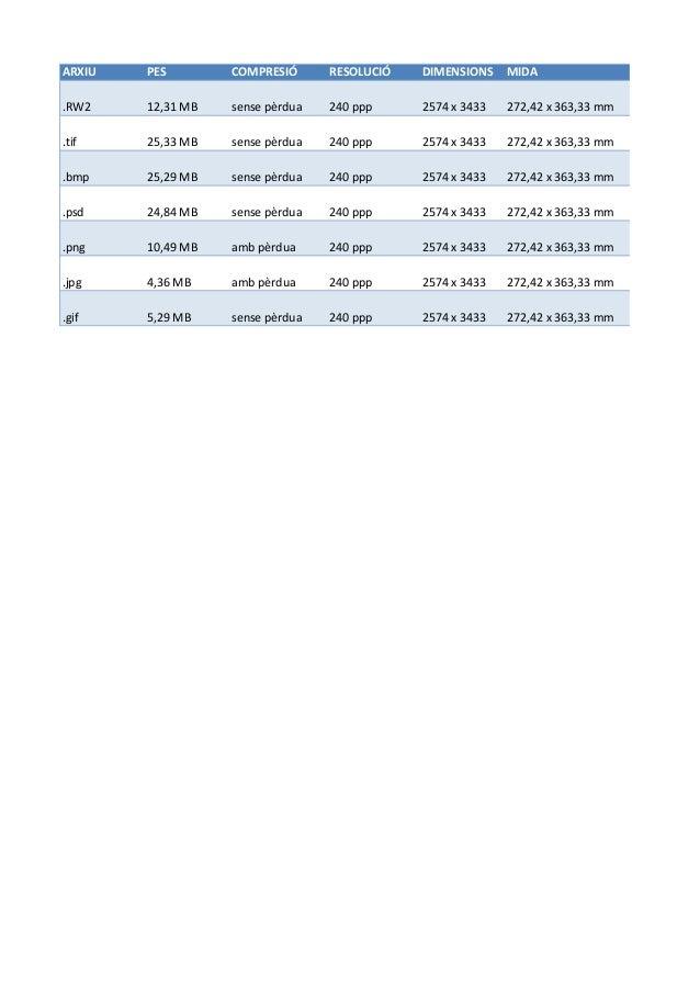 ARXIU PES COMPRESIÓ RESOLUCIÓ DIMENSIONS MIDA  .RW2 12,31  MB sense  pèrdua 240  ppp 2574  x  3433 272,42  x  363,33  mm  ...