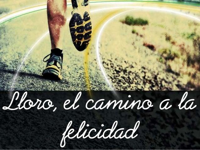 Lloro El Camino A La Felicidad