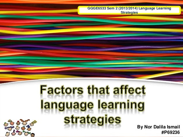 GGGE6533 Sem 2 (2013/2014) Language Learning Strategies By Nor Dalila Ismail #P69236