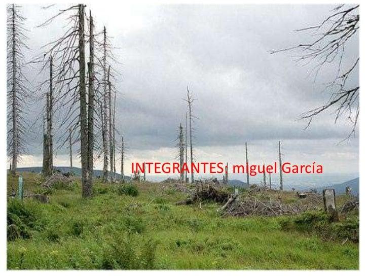 INTEGRANTES: miguel García