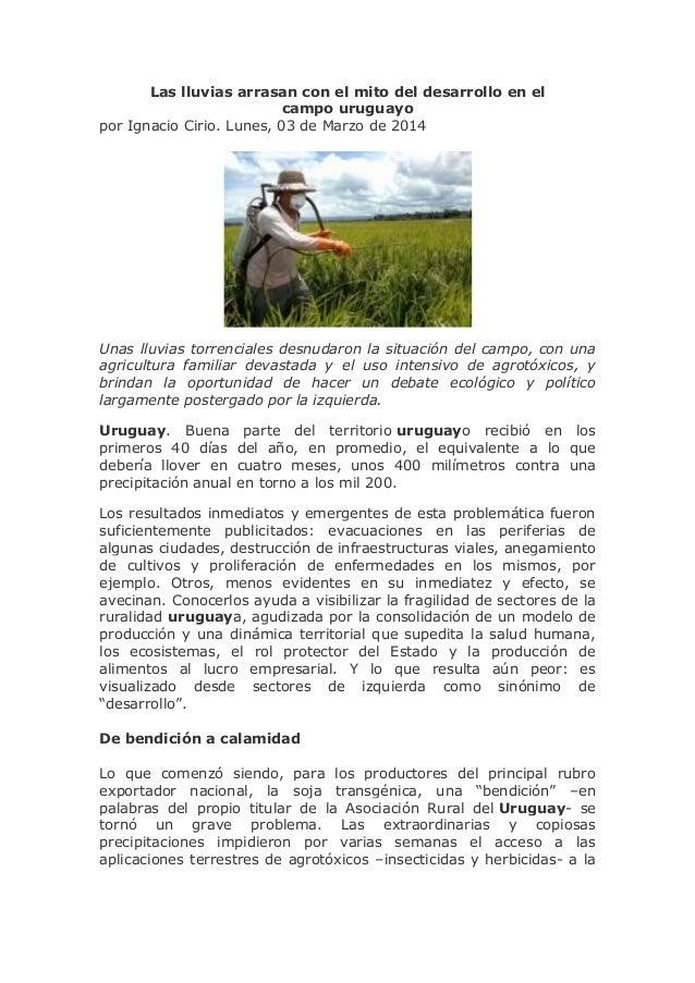 Las lluvias arrasan con el mito del desarrollo en el campo uruguayo por Ignacio Cirio. Lunes, 03 de Marzo de 2014  Unas ll...