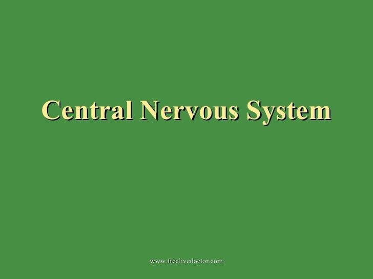 Central Nervous System www.freelivedoctor.com