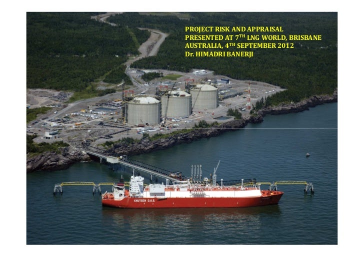 Liquefied Natural Gas project risk and appraisal