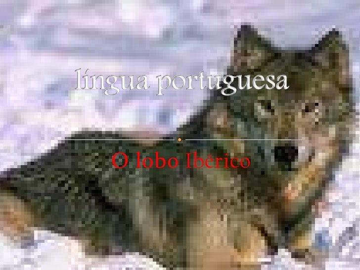 O lobo Ibérico<br />língua portuguesa<br />