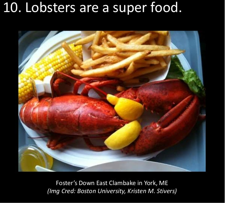 10. Lobsters are a super food.          Foster's Down East Clambake in York, ME       (Img Cred: Boston University, Kriste...