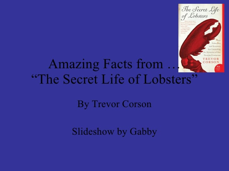 """Amazing Facts from … """"The Secret Life of Lobsters"""" By Trevor Corson Slideshow by Gabby"""