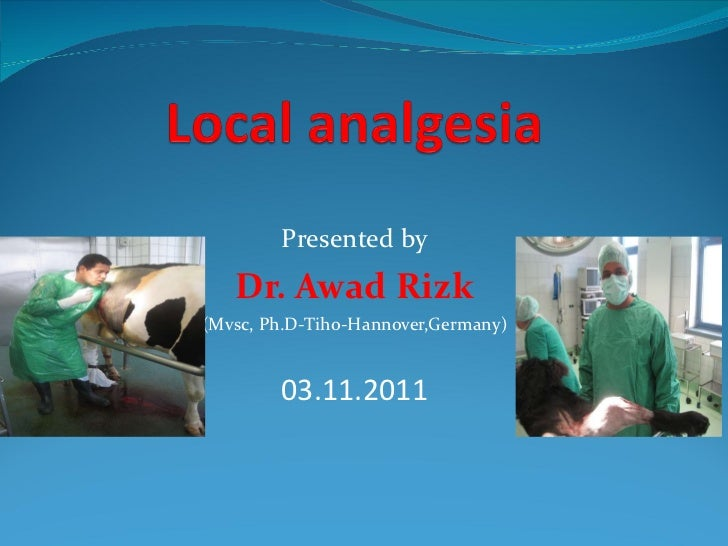 Local analgesia in animals_ Dr. Awad Rizk