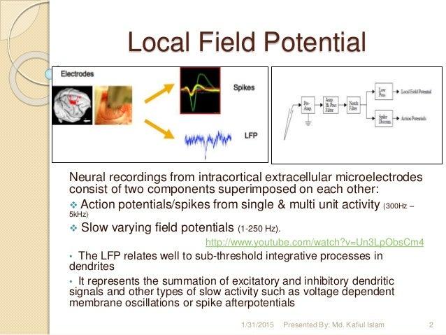 Local Field Potential Local Field Potential Neural