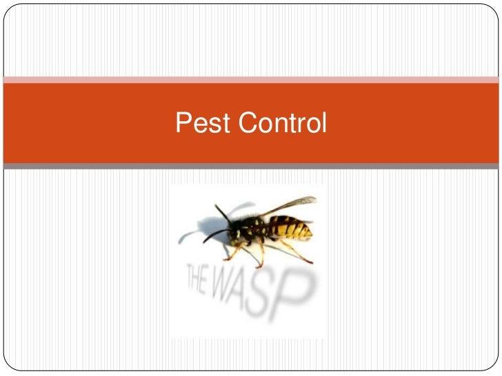 Pest Control<br />