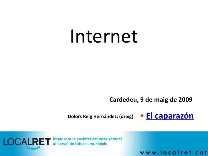 Internet                    Cardedeu, 9 de maig de 2009                                    El caparazón Dolors Reig Herná...