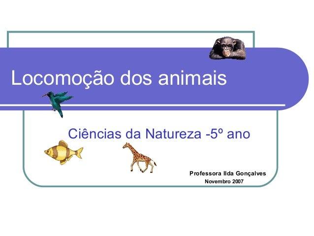 Locomoção dos animais Ciências da Natureza -5º ano Professora Ilda Gonçalves Novembro 2007