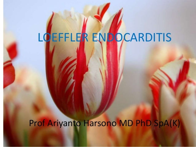 LOEFFLER ENDOCARDITIS  Prof Ariyanto Harsono MD PhD SpA(K)
