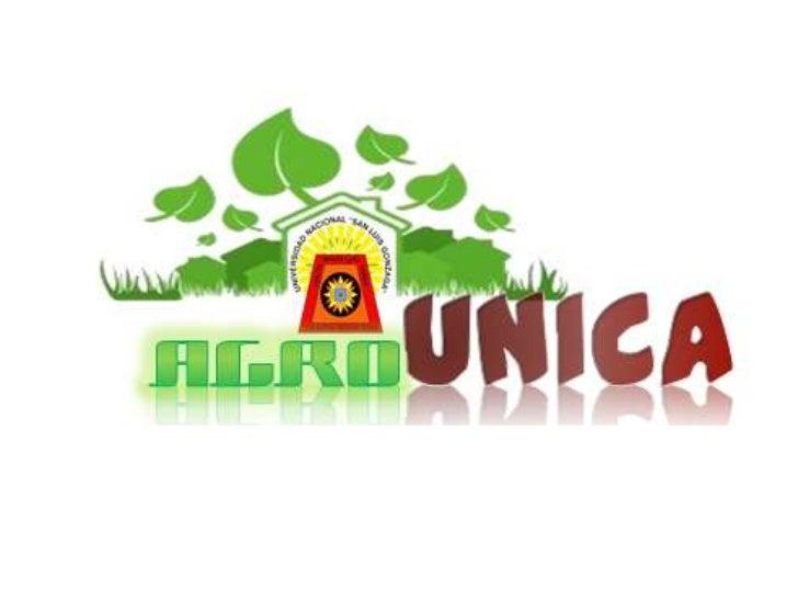 Logo 2 agrounica