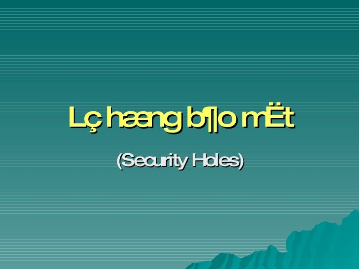 Lç hæng b¶o mËt (Security Holes)