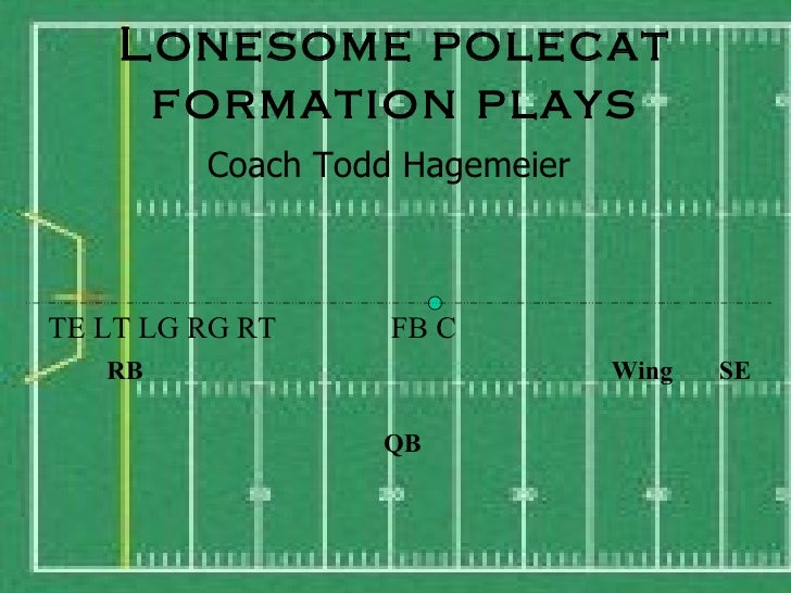 Lonesome Polecat Formation