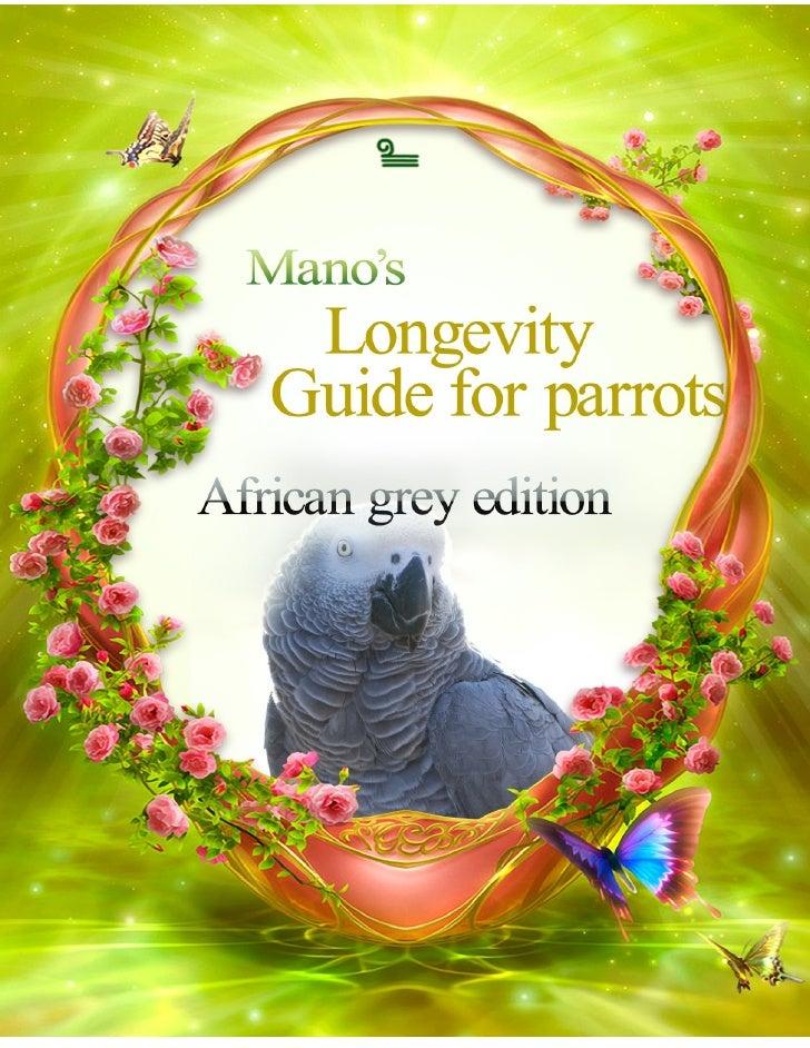 Africangreyparrots