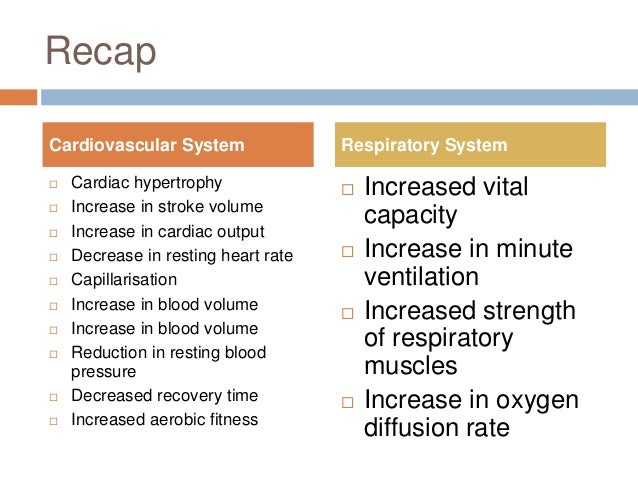 effects exercise cardiovascular system essay Torie soriano physiology lab report the effects of exercise on the cardiovascular system introduction exercise has a major impact on the cardiovascular system and its efficiency in the human body.