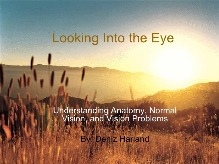 Looking Into the Eye Understanding Anatomy, Normal Vision, and Vision Problems By: Deniz Harland